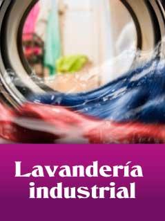 categoria lavanderias industriales - Home Auxihosteleria-Maquinaria de hostelería