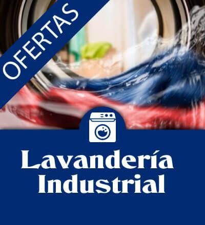 ofertas lavanderia industrial 1 - Maquinaria hosteleria ocasión: Lavandería profesional