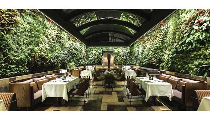 naturaleza 4 - Cómo decorar un restaurante: La guía definitiva.